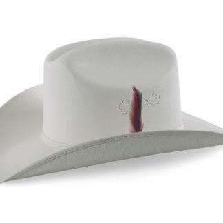 chapeau avec plume